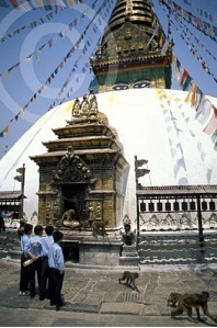 Nepal3MonkeyTemple