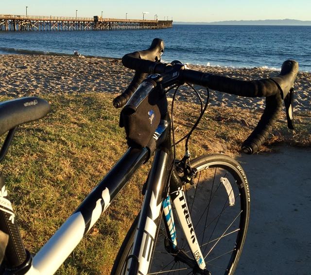 ChasetheBird6_Bike