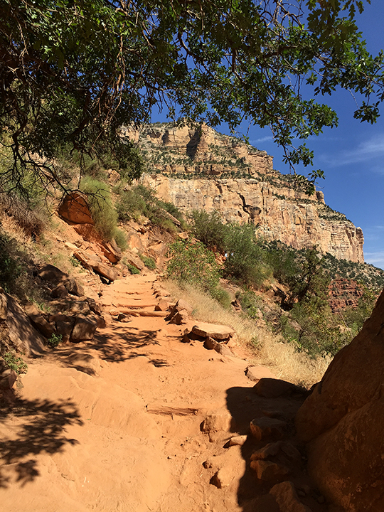 Photo of the view up on Bright Angel Trail in the Grand Canyon