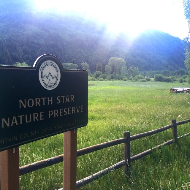 NorthStarSign