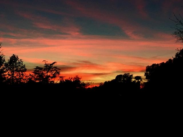 sunsetrun11716